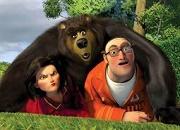 orso e umani
