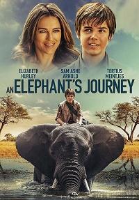 il ragazzo e il grande elefante locandina