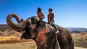 ragazzi ed elefante
